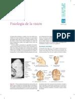 Fisiologia de la visión..pdf