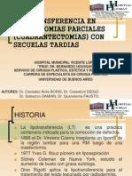 LIPOTRANSF. oficial.ppt
