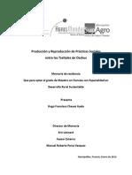 Producción y Reproducción de Practicas Sociales entre los Tseltales de Oxchuc