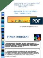 185865611-Pymes.pdf