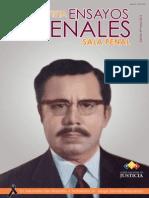 Ensayo HOMBRE.pdf
