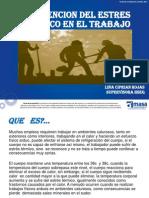 CAPACITACION ESTRES CALORICO.pptx