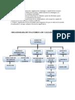 ORGANIGRAMA DE UNA FABRICA DE CALZADOS.doc