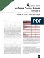 Tumores de la piel y tejidos subcutáneos.pdf
