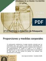 estudiomorfolgicodelafigurayelrostro1.pptx