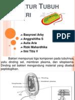 strukturtubuhbakteri-131001074324-phpapp01.pptx