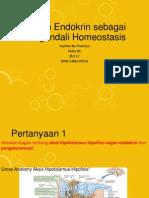 Sistem Endokrin