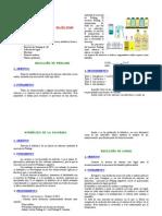 Reconocimiento de glúcidos.pdf