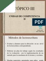 Español-Lectoescritura.ppt