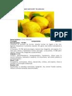 Limão.docx
