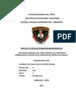 Cuál es la incidencia de la policía nacional del perú frente a la creciente criminalidad juvenil en el Perú.docx