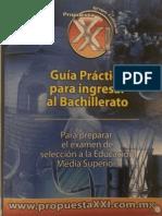 Guía Siglo XXI.pdf