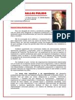 curriculum emilia zaballos pulido.pdf