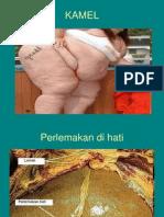 lemak-2012-ppt