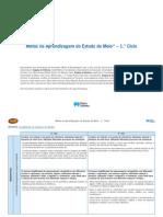 METAS estudo do meio.pdf