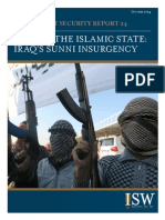 sunni insurgency in iraq