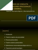 178830782-sindromes-organicos-personalidad-1.ppt