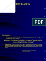 04Fertilizationtxt.ppt