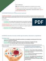 Edelvives 5º primaria LOS SERES VIVOS Y LO SERES INERTES ud 1.pdf