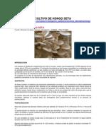 CULTIVO DE HONGO SETA.docx