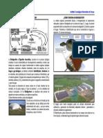 QUÉ ES LA BIODIGESTIÓN.pdf