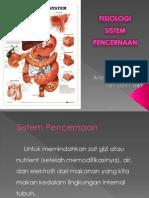 Fisiologi Sistem Pencernaan (2)