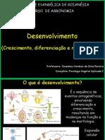 auladesenvolvimento vegetal-.pptx