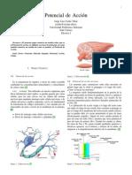 POTENCIAL_DE_ACCION.pdf