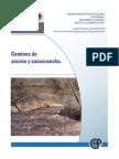 FICHA TECNICA_CAMINOS DE ACCESO Y SACACOSECHA.pdf