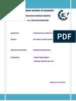 MONOGRAFIA DE TECNO III.docx