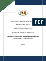 PLAN DE EXPORTACION PANELINES ( proyecto).docx