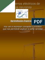 potencial_de_membrana3.ppt
