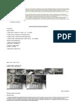 Cómo se forman las reacciones químicas.docx.pdf