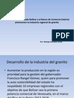 Desarrollo de la industria del granito.pptx