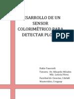 tess-modelo.pdf