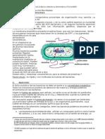 Morfología y reproducción bacterias.doc