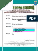 seminario n° 5 Desarrollo Psicosocial, cognitivo y espiritual en el Escolar REPARTIDO.docx