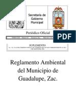 wo65335.pdf