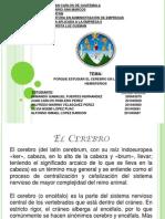 PORQUE ESTUDIAR EL CEREBRO EN LA PSICOLOGIA HEMISFERIOS.ppt