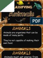classifying animal presentation final