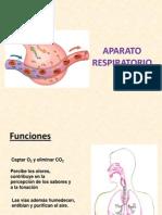 APARATO_RESPIRATORIO.pptx