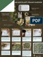 How to make an air plant frame garden