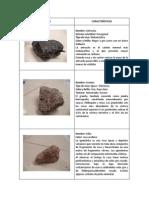 ejemplos de rocas.docx