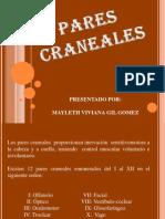 5 PARES CRANEALES.pptx