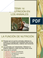 14_nutricion_animales.ppt