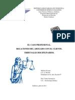 Informe Caso Profesional, el abogado y su cliente.docx