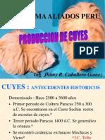 Produccion de Cuyes.ppt