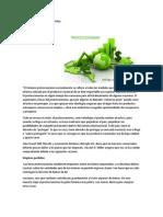 El proteccionismo y sus efectos jjjjjjjjjjjjj.docx