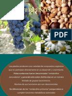 978239534.TERPENOS-Clase 2013 (presentación).pdf