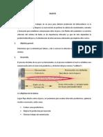 baleos informe i.docx